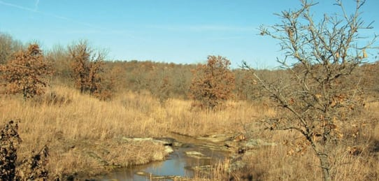 120 Acres- Barnsdall Oklahoma Hunting Land for Sale (Sold)