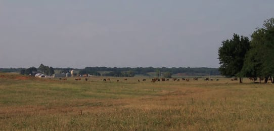 1,000 acre Fisher- Land for Sale Oklahoma (SOLD)