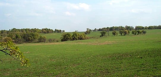 14,389 Acres- Whitmire Ranch
