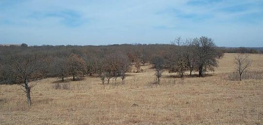 120 Acres- Hart Property