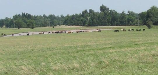 1640 Acres Bar V 2- Oklahoma Ranch Land for Sale (SOLD)