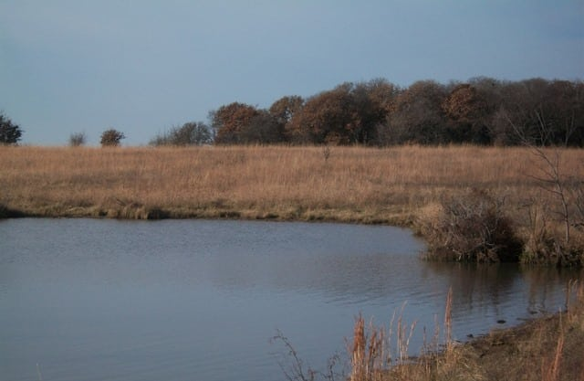 Kimzey Pasture Land For Sale – 320 Acres Elk County, KS