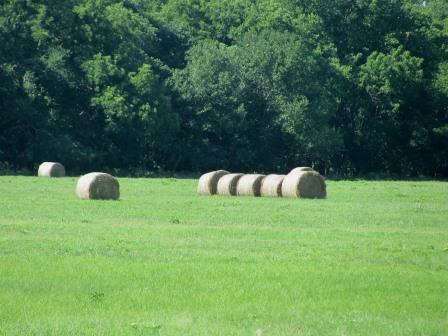 McGuire Ranch- 428 Acres- Pawhuska, OK